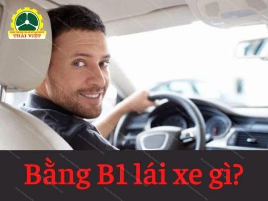 Bang-B1-duoc-lai-cac-loai-xe-gi
